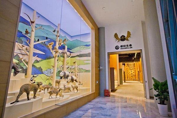 """上海自然博物馆:""""直播秦岭""""今线上开讲."""